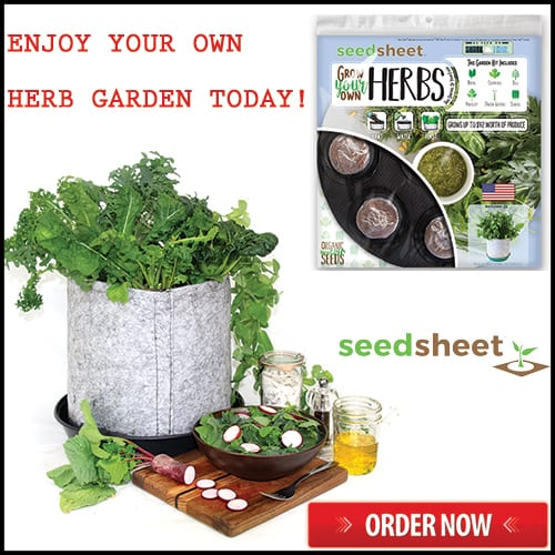 Seed Sheets